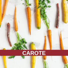 Corso di cucina: le CAROTE