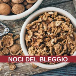 Corso di cucina: NOCI DEL BLEGGIO