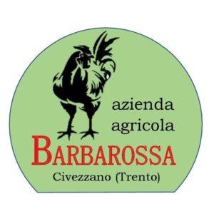 azienda agricola barbarossa